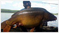 72 óra alatt 400kg hal